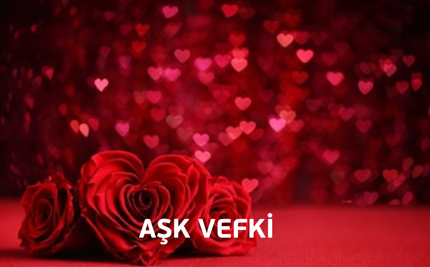 ask-vefki